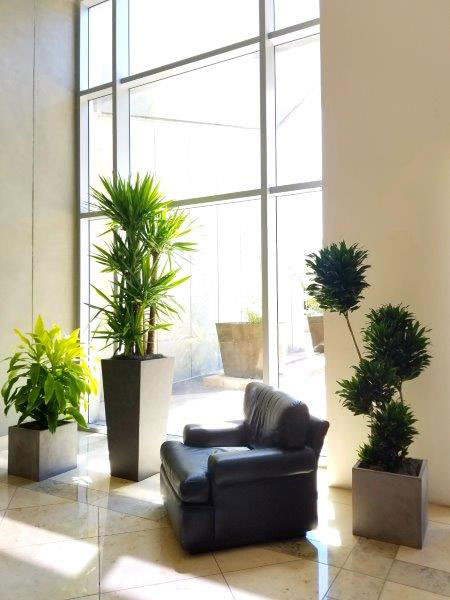 About Us-Plant Office