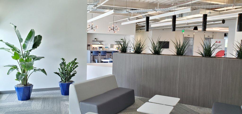 office plants image